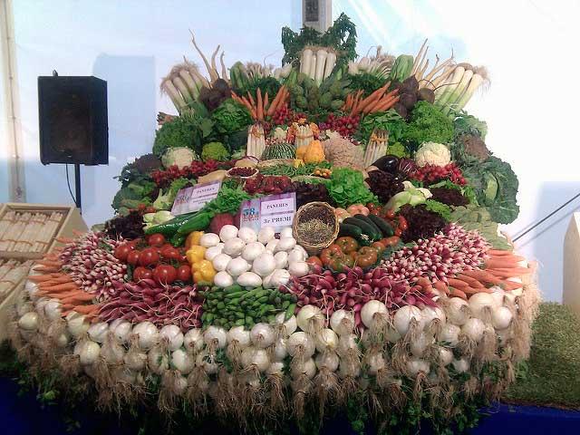 Panera verduras